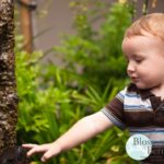 Picture of a toddler touching a tree