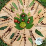 Picture of a Nature Mandala